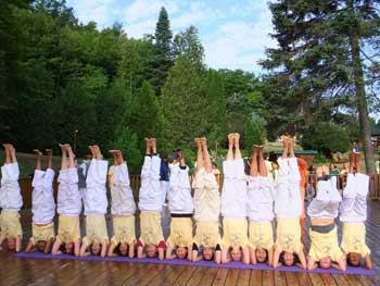 Group performing headstands.