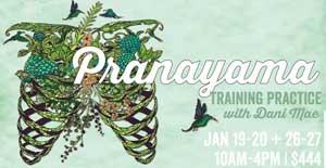 Pranayama Training Graphic