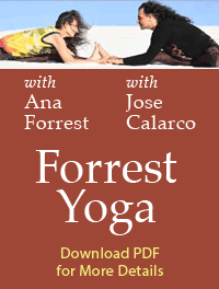 Graphic for Forrest Yoga Workshop, PDF Download button.